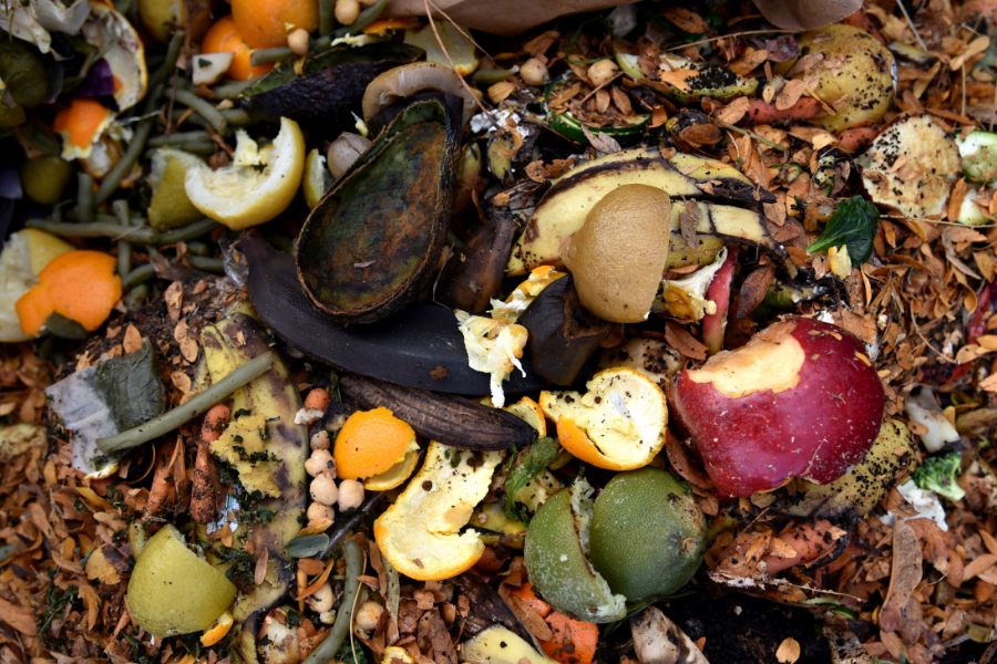 Sustainability - Compost - Avery Dennison